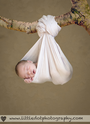 baby in sling on tree branch